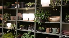 IKEA Temporary: il nuovo spazio dedicato al cibo per il Fuorisalone 2015 ed Expo Milano 2015, le foto in anteprima