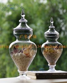 Export quality special glass containers glass bottles hydroponics household items Hydroponic Gardening, Hydroponics, Seashell Crafts, Glass Containers, Household Items, Glass Bottles, Sea Shells, Decoration, Home Decor