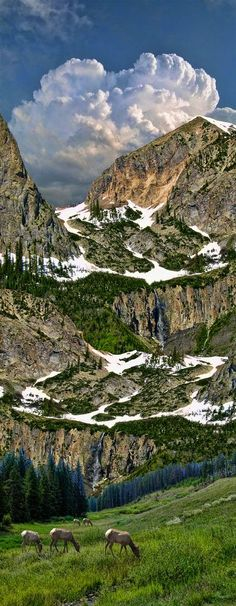Beauty Of NatuRe: Elk Mountains - Colorado - USA