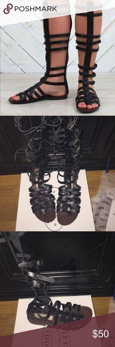 Steve Madden Sparta gladiator sandals Worn once Steve Madden Shoes Sandals