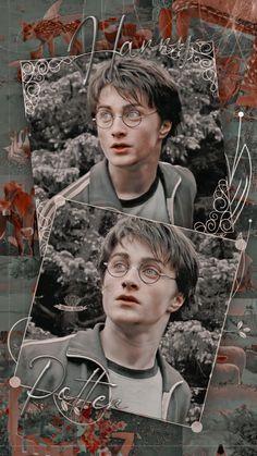 Daniel Radcliffe Harry Potter, Harry Potter Draco Malfoy, Harry Potter Fandom, Harry Potter Characters, Harry Potter World, Harry Potter Spells List, Mundo Harry Potter, Harry James Potter, Harry Potter Pictures
