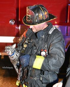FEATURED POST   @313firephotography -  FF OLear of DFD E52 rescues a cat from a 5th Alarm fire in Grosse Pointe late last night #grossepointe #rescue #detroitfiredepartment #detroitfire #dfd #fire . ___Want to be featured? _____ Use hastag chiefmiller  WWW.CHIEFMILLERAPPAREL.COM . . CHECK OUT! Facebook- chiefmiller1 Periscope -chief_miller Tumblr- chief-miller Twitter - chief_miller YouTube- chief miller Vero - chief miller  TAG A FRIEND WHO NEEDS TO SEE THIS. Please be sure to Like and…