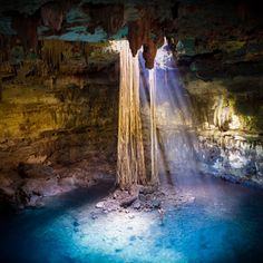 Cenote in the Yucatan Peninsula / Unknown