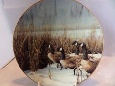 Canada goose plate, collectors plate, waterbird plate, artist Eric Tenney, Bavarian porcelain, West Germany, Danbury Mint, limited edition by MaddisonsRainbow on Etsy