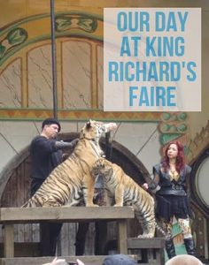 A Faire Amount of Learning Different Types Of Tigers, Baby Chimpanzee, Experiential Learning, King Richard, Candle Maker, 9 Month Olds, Power To The People, Cool Watches, Three Boys