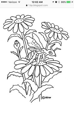 Coloring Pages for Kids by Mr. Adron: Printable Acorns and