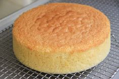 I love this sponge cake recipe. It's easy and you can make hundreds of different cakes with this base. Sugar Free Sponge Cake Recipe, Vanilla Sponge Cake, Sponge Cake Recipes, Chocolate Sponge Cake, Vanilla Cake, Japanese Sponge Cake Recipe, Genoise Sponge Cake Recipe, Bolo Vegan, Vegan Cake