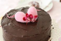 chocolate, cake, mice