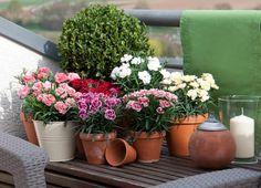 2x Set Künstliche Pflanzen Blumen Maiglöckchen Haufen Hochzeit Home Decoration