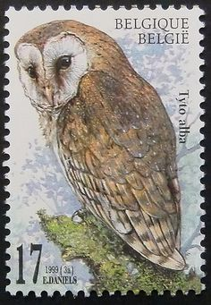 7902  Framed Postage Stamp Art  Tyto alba  by PassionGiftStampArt, $12.90