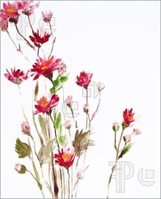 Illustration Of Painting Of Flowers. Royalty Free Illustration at ...