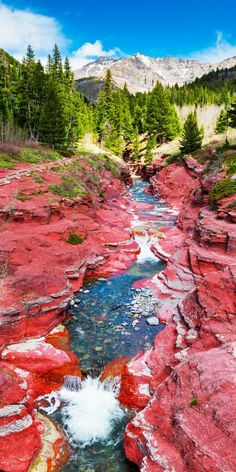 Amazing Places to Visit in Alberta, Canada Red Rock Canyon at Waterton Lakes National Park! Top 10 Amazing Things To See And Do In Alberta, Canada! Including the Columbia Icefields Cool Places To Visit, Places To Travel, Travel Destinations, Alberta Travel, Waterton Lakes National Park, Parc National, Jasper National Park, Canada National Parks, Photos Voyages