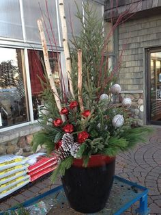 Christmas or winter planter with birch