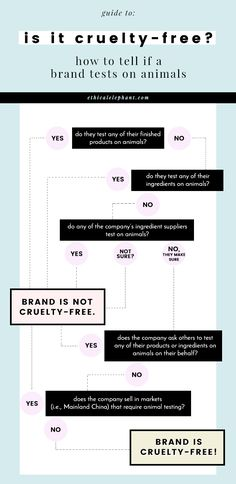 Use this infographic and set of questions when doing your research of figuring out whether a brand is cruelty-free or not!