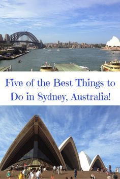 Find out some of the best things to do in Sydney, Australia, from staring at Sydney Harbor, to watching jumping koalas, to finding the saddest museums.