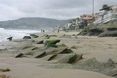 Laguna Beach, CA.  During early misty morning walk.