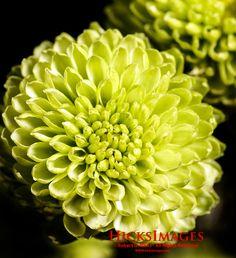 IMG_0032_DxO-Edit-1.jpg
