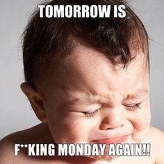 I feel like this every week.