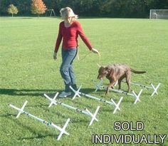 Agility Gear has attractive prices on 1,000+ quality dog products.  We have something for every Devoted Canine Companion including those hard to find items for the Performance, Show, Hunting, & Sporting Dog. We specialize in Dog Agility Equipment / Obstacles & D-I-Y Kits, Pet Travel, Crates & Pens, Training & Tracking, Pet Containment and more! Look for free shipping on selected products.  Our product line includes the Agility Gear brand and major manufacturer's brands at attractive prices…