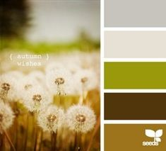 Autumn wishes, color palette by Design Seeds Design Seeds, Color Schemes Design, Brown Color Schemes, Design Color, Paint Schemes, Living Room Paint, Green And Brown, Dark Brown, Gray Green