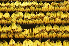 Fresh Organic Banana , Find Complete Details about Fresh Organic Banana,Fresh Organic Banana from Fresh Bananas Supplier or Manufacturer-ousman tahyl Rainbow Aesthetic, Summer Aesthetic, Fire Flower, Yellow Fever, Yellow Submarine, Shades Of Yellow, Happy Colors, Mellow Yellow, My Sunshine