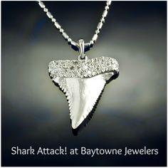 Beach Jewelry by Baytowne Jewelers - Pave Diamond Shark Tooth Pendant