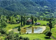 #Heaven in north of Iran, Gilan Province. Fancy to step there?  الجنة على الارض ، محافظة كيلان - شمال ايران