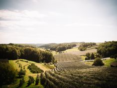ein unglaublicher Blick von unserer Terrasse. Gin, Whiskey, Vineyard, House, Outdoor, Terrace, Whisky, Outdoors, Haus