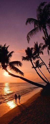 Maui Sunset ,