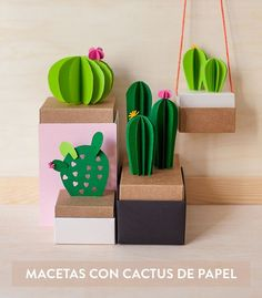 A DIY cactus garden from papiro Flower Bookey, Flower Film, Flower Names, Cactus Flower, Flower Pots, Paper Crafts Origami, Easy Paper Crafts, Paper Crafting, Cactus Drawing