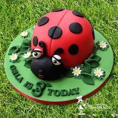 Ladybird 3rd birthday cake  Cake by Cakeybakeymakey