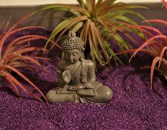 Zen Garden^& Color