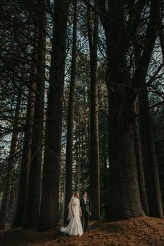 Documenting modern and passionate couples across Australia. Passionate Couples, Snowy Mountains, Forest Wedding, Just Married, Bridal Portraits, Pine, Wedding Photos, Sugar, Board
