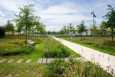 Mont-Evrin Park by Urbicus « Landscape Architecture Works Park Landscape, Landscape Edging, Landscape Designs, Contemporary Landscape, Urban Landscape, Landscape Architecture, Architecture Jobs, Low Maintenance Landscaping, Landscaping Tips