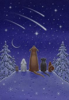 This is what my front lawn looks like at night :) Eva Melhuish - Freelance Illustrator - Gallery