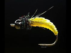 Tying a Simple & Effective River Caddis Larvae by mak - YouTube
