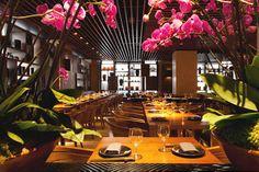 Novikov Restaurant Mayfair London