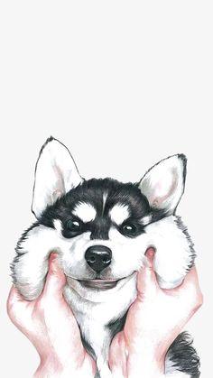 Huskies, Animal, Pet PNG Image