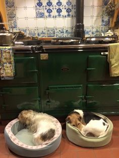 Sleeping Dogs and an AGA stove