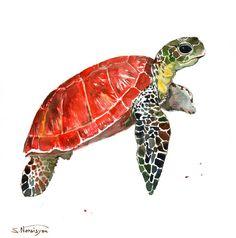Sea Turtle. Original watercolor painting, 12 X 12 in, (30 X 30 cm), scarlet, olive green sap green, indigo animal art, sea animals,