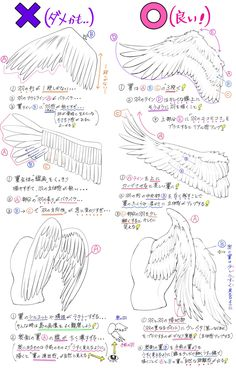 Manga Drawing Tips Wing references Drawing Practice, Drawing Skills, Drawing Lessons, Drawing Techniques, Drawing Tips, Drawing Sketches, Drawings, Drawing Ideas, Wings Drawing