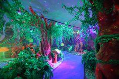 blacklight forest