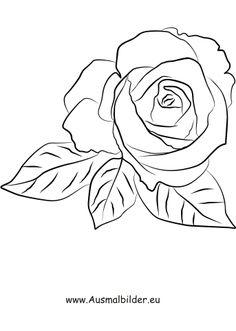 ausmalbild rosen zum kostenlosen ausdrucken und ausmalen. ausmalbilder   malvorlagen   blumen