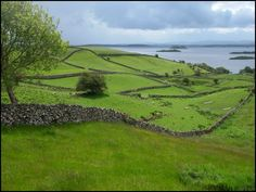 Believe it or not, Ireland is made up of approx. 75% rock!  Just imagine... underneath all that beautiful green is nothing but stone.  This is the reason there are so many stone walls everywhere... they didn't know what else to do with all of it!  When you're above Ireland, it actually looks like a giant grid due to the stone!