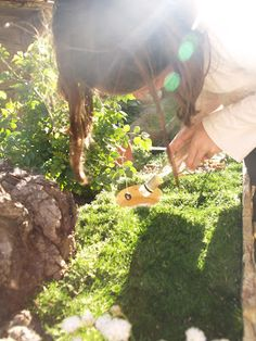 I really enjoy this: How To Make A Fairy Garden
