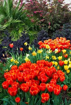 Garden Styles - makes me anxious to finally see the tulips sprout after a late spring in #Calgary #YYC