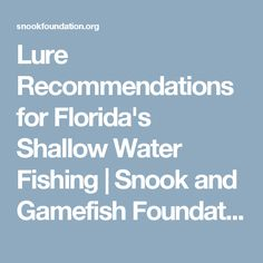 Lure Recommendations for Florida's Shallow Water Fishing | Snook and Gamefish Foundation