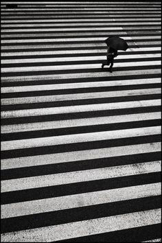 """birdcagewalk: """"sapientsemaphore:Tamachi, Tokyo, 2012 (via Shin Noguchi) """""""
