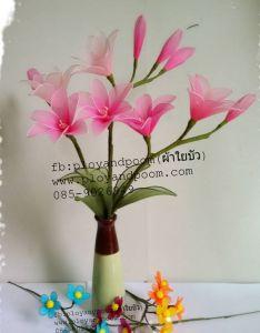 harisnyavirág rózsaszín