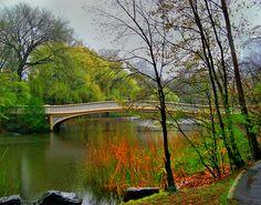 Arches And Bridges Of Central Park